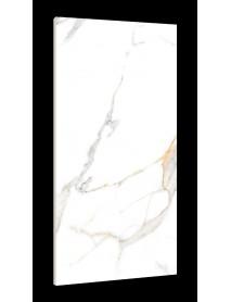 Ceramic Tile (6)