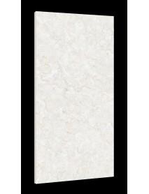 Ceramic Tile (11)