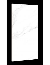 Ceramic Tile (5)