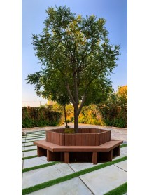 Tree Hexa Bench